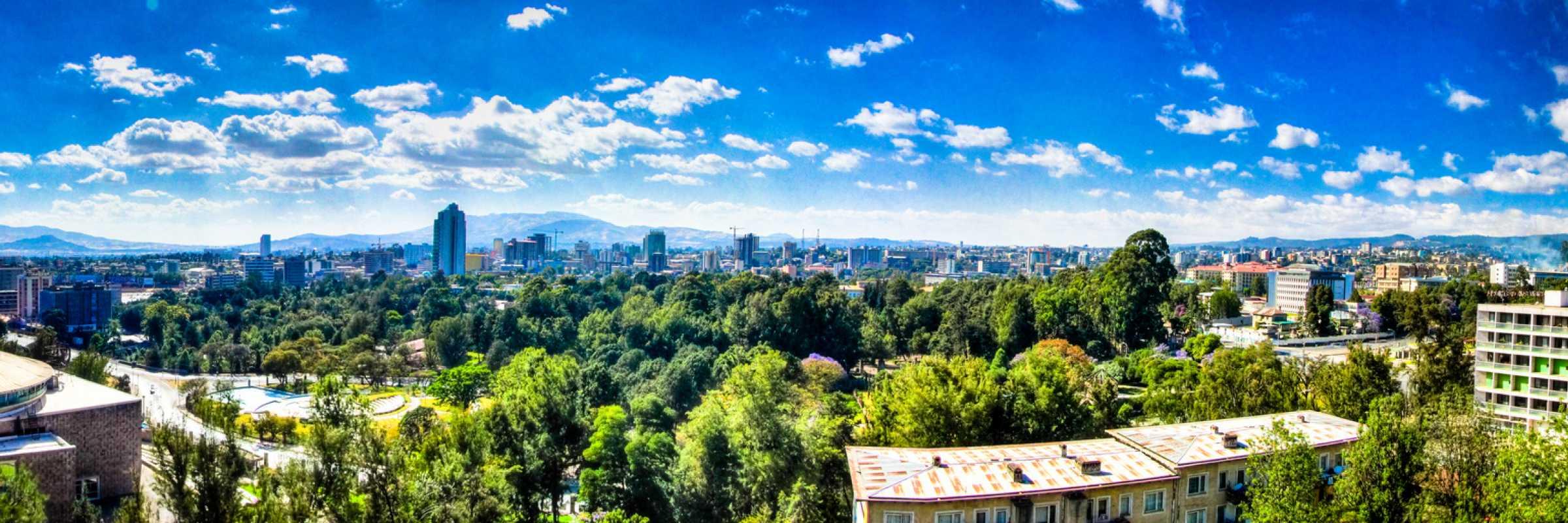 Addis skyline by Babak Fakhamzadeh