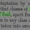Statement from Report on the Food Requirements of Man, Food (War) Committee, The Royal Society, 1919.  91% agreed and 9% disagreed with the statement at the Archives Interactive table.
