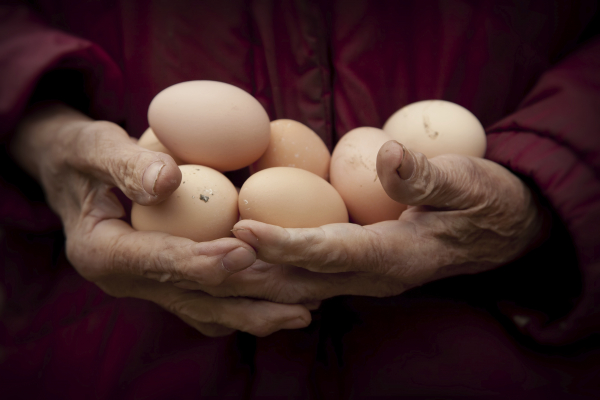 Older person holding eggs