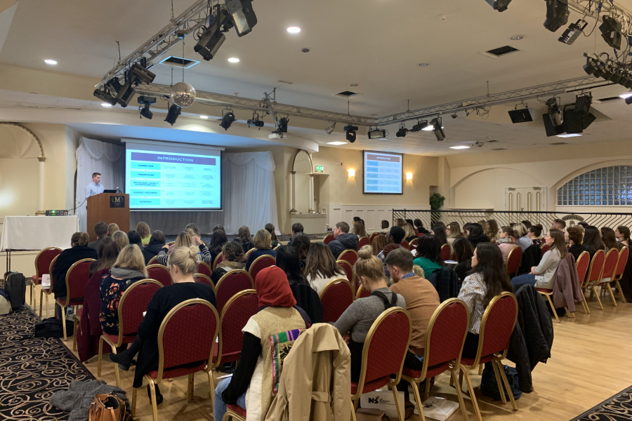 The 2019 Irish postgraduate conference