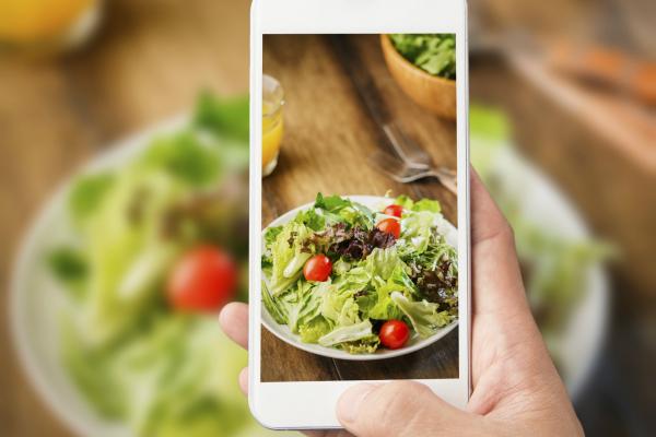 New mobile methods for dietary assessment