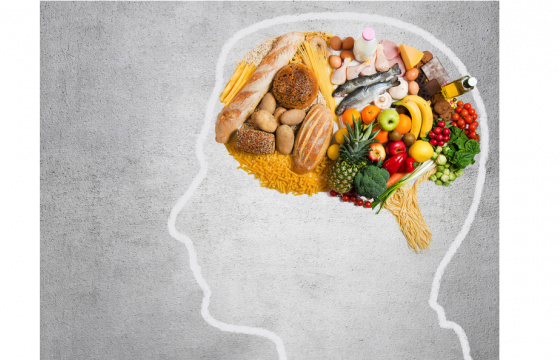 Food and the brain