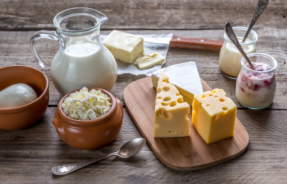 Dairy Products and CVD
