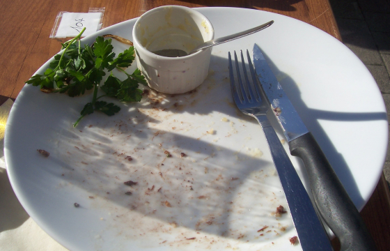 Empty plate after a meal is finished
