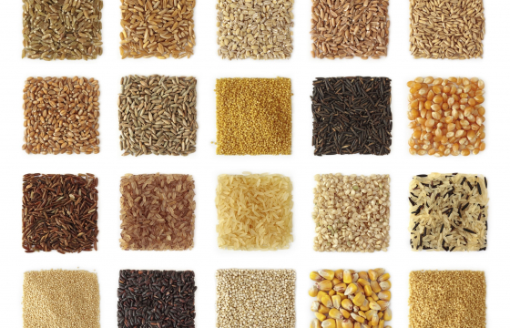 variety of grains